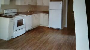 2 Level Home For Rent Stratford Kitchener Area image 2