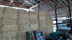 Barn Stored Hay For Sale