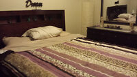 Furnished Room for Rent, for Professional