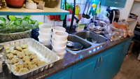 Halal pakistani tiffin and catering service