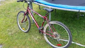 26 in mountain bike