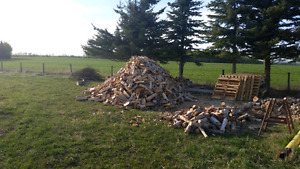 Seasoned birch firewood  in alhambra ab only 5 cords left