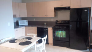 FULLY FURNISHED CONDO-AVAILABLE IMMEDIATELY