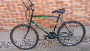 Triumph 26 inch frame mountain bike