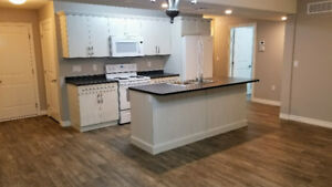 NEW - 2 Bedroom Luxury House for Rent - With new appliances
