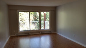 2 bedroom, 1 bath apartment in Rossland for Rent