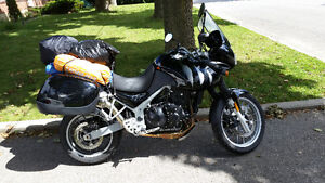 RARE FIND!!!  2006 Triumph Tiger 955i Black for sale by owner