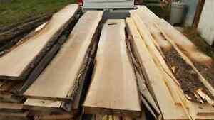 pin. érable,  cedre, méleze, bois construction et ebenisterie. Québec City Québec image 10