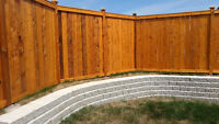 Skilled painter specializing in deck and fence staining