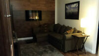 Furnished Basement Suite with Private Bath