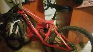 Giant Boulder Mountain bike 21 speed