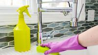 House Cleaning Services - Lambeth, Delaware, South London