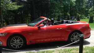 2015 Ford Mustang GT  Cabriolet
