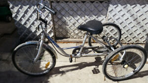Norco Parklane Adult Tricycle bike