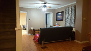 All inclusive furnished large 1 bedroom in Little Italy