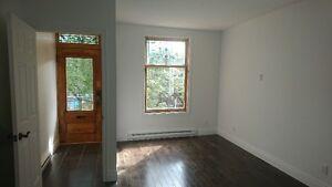 Appartement moderne refait à neuf - Villeray