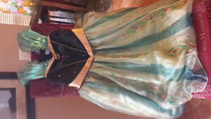 Disney Frozen: Anna  Costume/Dress  size 9/10 Strathcona County Edmonton Area image 1