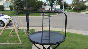 Bird's Cage Play-Stand For Sale
