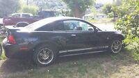 2001 Ford Mustang White Rally Strips Coupe (2 door)