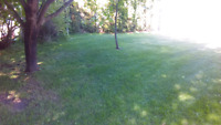 Lawn Tree Garden Maintenance Please call or text #250-617-9215