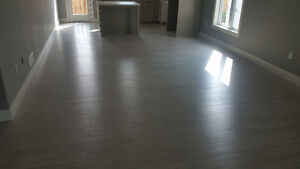 Renovator for small and large jobs! London Ontario image 7