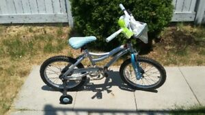 Children's Bike with Training Wheels, Horn and Carry Bag