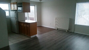 1 Br close to Universities and Down Town Kitchener