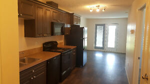 2 BEDROOM APARTMENTS IN CARLYLE! Rent Subsidy Available!