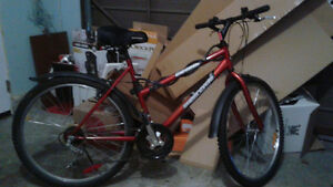 Women's Supercycle Mountain Bike
