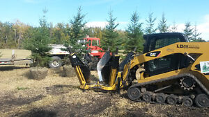 Spruce trees for sale. Tree moving. Tree spade.