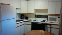 Professional Student - Fully Furnished 1 BR Apartment All Incl.