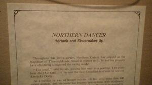 Northern Dancer, limited print of Northern Dancer by Fred Stone, Belleville Belleville Area image 3
