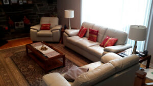 living room and family room furniture