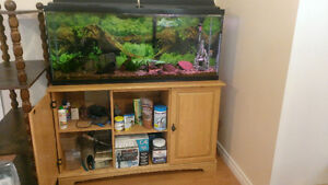 55 Gallon Aquarium and Stand and Supplies