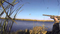 Guided Duck Hunting Trips