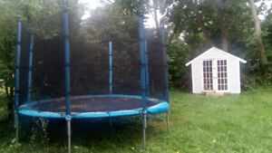 Trampoline and basketball net