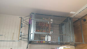 For sale - Extra large parrot cage and supplies