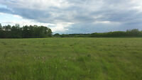 Beautiful Farm/Recreational land for sale