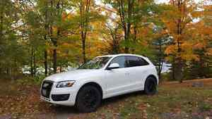 2010 Audi Q 5 Quattro w Winter tires as well!