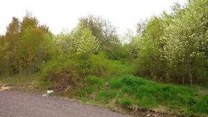 Cheap large building lot in Sussex with great view!