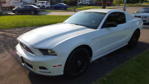Used 2014 Mustang V6 with GT options