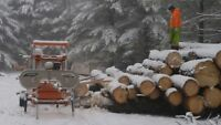 Wood Milling Services +
