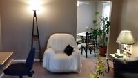 1 Bedroom Fully Furnished - 8th St.