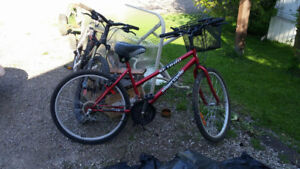 Womens Mountain Bike with comfy seat and basket