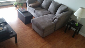 Moving Sale - Sectional Couch