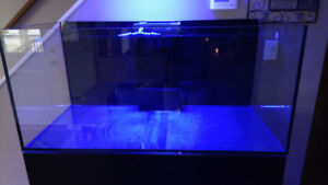 Red Sea Reefer 425 XL !!! MINT Condition!!!