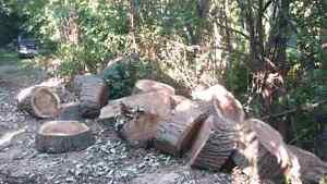 Need your wood split?? Contact me Cambridge Kitchener Area image 7