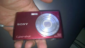 Sony Cyber-shot DSC-W510 Digital Camera