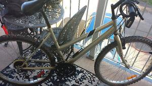 Sport Tek 17 inch women's bike