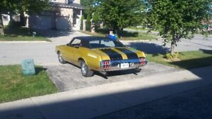 1972 Oldsmobile Cutlass for Sale by Owners and Dealers
